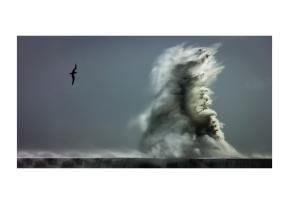 Cape Storm #3_A3