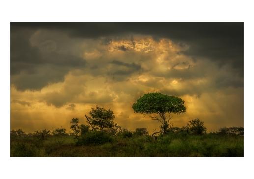 Landscape #2_A3