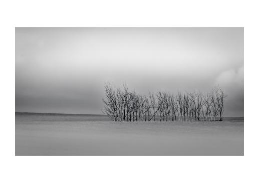 Landscape #7_A3